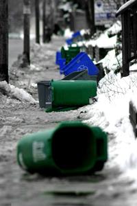 green-bins200x300.jpg