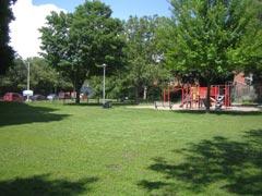 2009-park.jpg